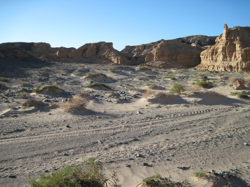 The Nemegt Formation (or Nemegtskaya Svita) is a geological formation in the Gobi Desert of Mongolia, dating to the Late Cretaceous.jpg