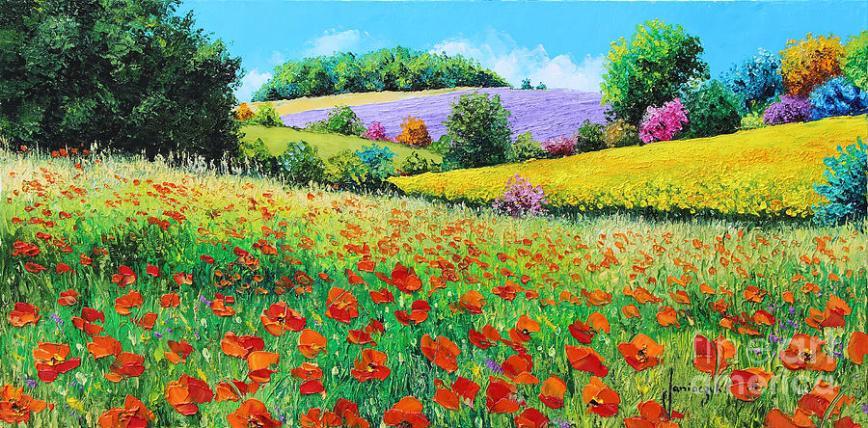 1-provencal-flowers-jean-marc-janiaczyk (1).jpg