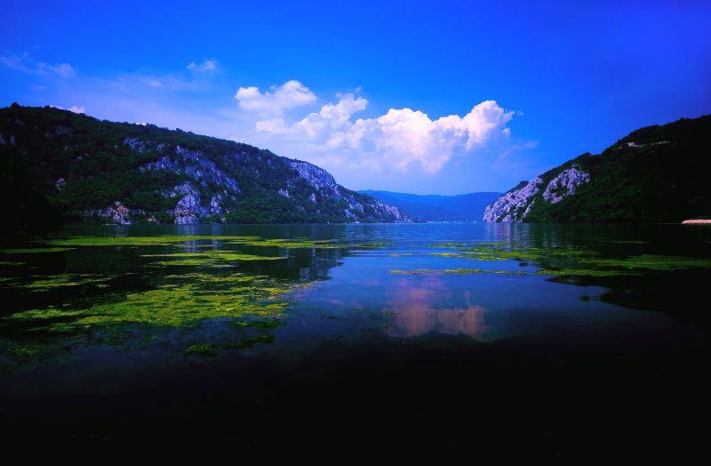 Ο Δούναβης από τον Miodrag Bogdanovic