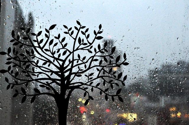 βροχή πίσω από το τζάμι
