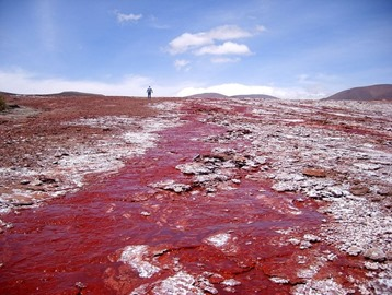 red-lagoon-chile-2[6]