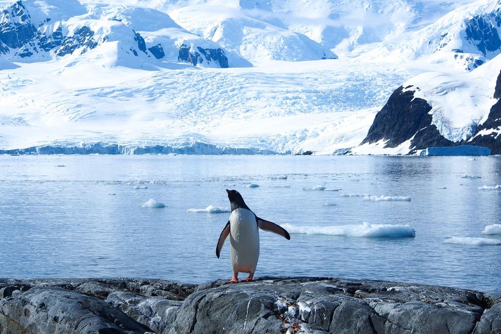 Heres_who_owns_Antarctica-35e432b0e2bcbfc202474e515aec8ace