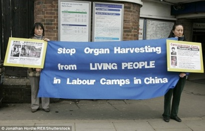 Human-rights-activists-have-long-campaigned-for-an-end-to-the-cruel-practice-but-the-latest-report-claims-transplants-have-increased.jpg